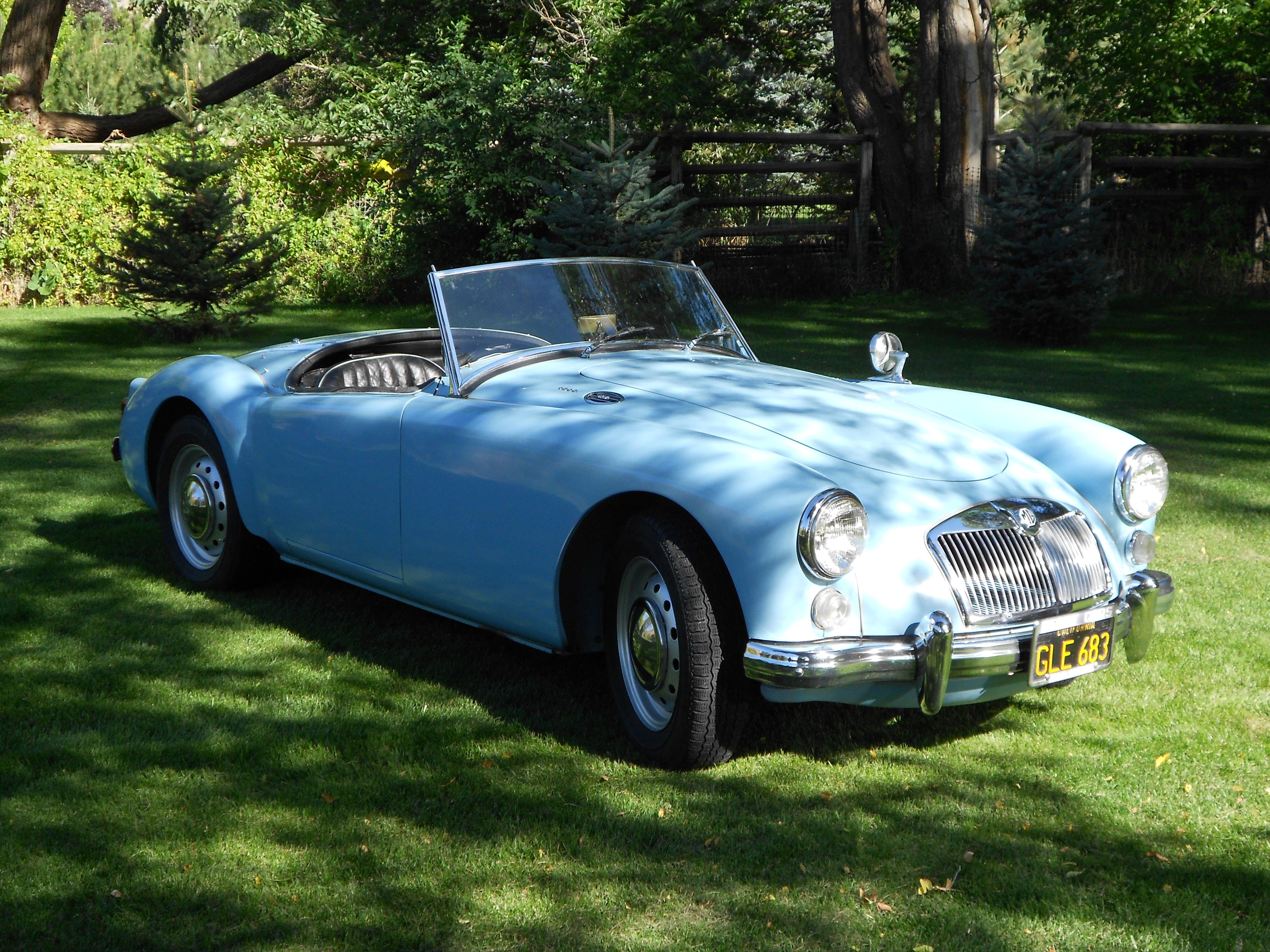 Vintage Motors of Lyons
